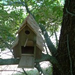 Nichoir pin double toiture red cédar