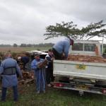 15/11/2013: Vieilles tuiles de la ferme Cournaou
