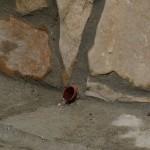 Barbacane en cuivre pour le passage de l'eau