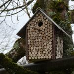 2020-12-31 Nichoirs rondelles de noisetiers couverture ardoise