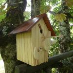 Mai 2021: nichoir façade oiseaux